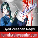 https://aliwalayazadar.blogspot.com/2020/08/syed-zeeshan-naqvi-nohay-2021.html
