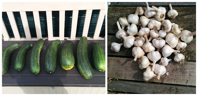 courgette and garlic - www.growourown.blogspot.com