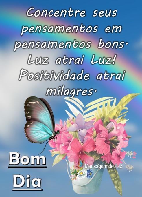 Concentre seus pensamentos   em pensamentos bons.  Luz atrai Luz!  Positividade atrai milagres.  Bom Dia!