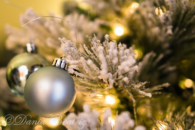 fotos-con-luces-de-navidad-en-casa