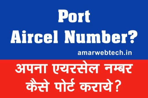 How to Port Deactivated Aircel Sim Number in Hindi