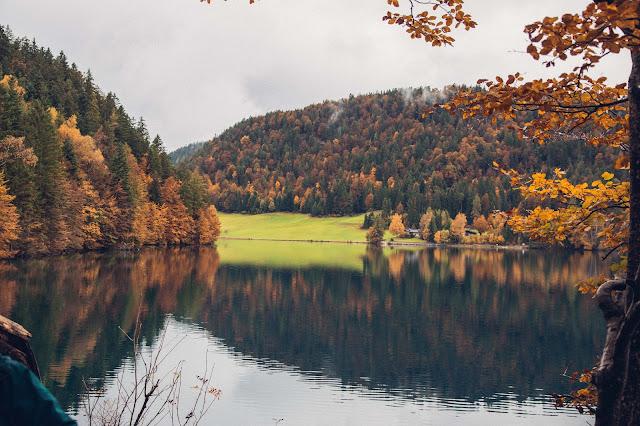 Hintersteiner-See-Rundweg  Wanderung Scheffau  Wilder Kaiser  Wandern Kitzbüheler alpen Tirol  Leichte Tour in traumhafter Kulisse 14