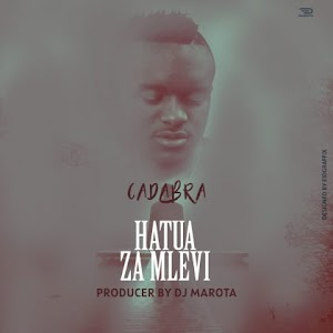 Download Audio | Cadabra - Hatua za Mlevi (Singeli)