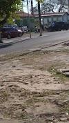"""Polícia Civil deflagra a operação """"LIXO DE OURO"""" na cidade de Guadalupe no Piauí"""