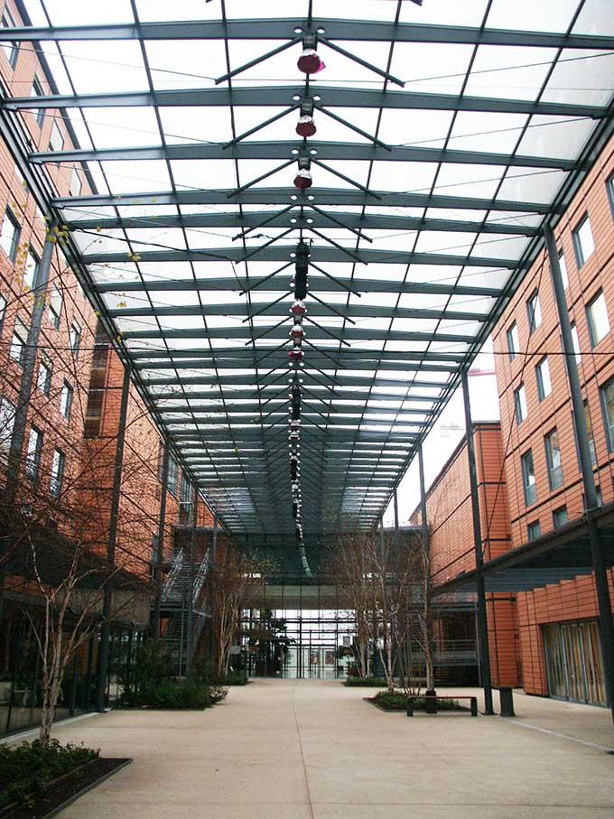 Cite International di Renzo Piano a Lione