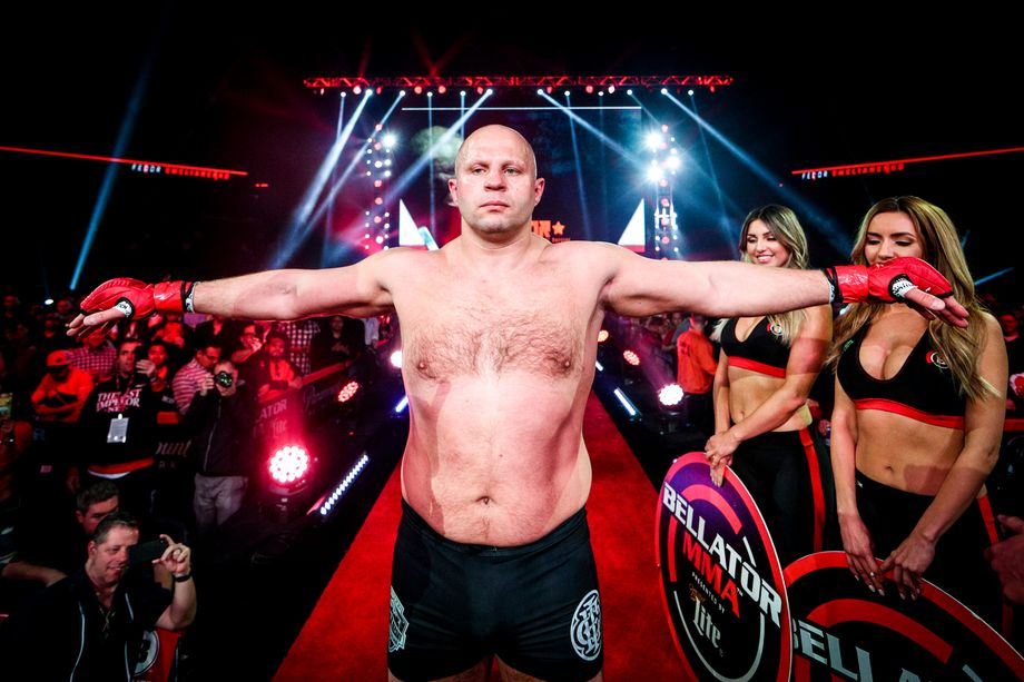 Fedor Vs Alexander Emelianenko (Brother against Brother ...