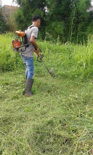 Tukang potong rumput,Jasa potong rumput murah