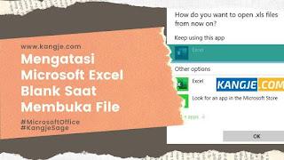 Mengatasi Microsoft Excel Blank Saat Membuka File Secara Langsung