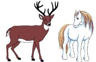 Fábula: El caballo y el ciervo