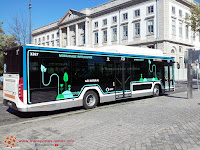www.facebook.com/transportesonline