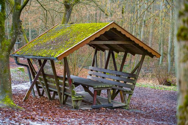 Schächerbachtour | ExtraTour Vogelsberg | Wandern Homberg (Ohm) | Wanderung in Hessen 07