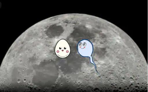 Mặt Trăng trở thành nơi dự trữ tinh trùng, hạt giống khi ngày tận thế tới