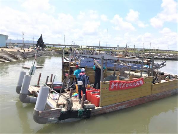 增漁業資源永續海洋生態 台中放流百萬尾午仔魚苗