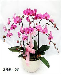 Tips Membeli Bunga Di Toko Bunga Online