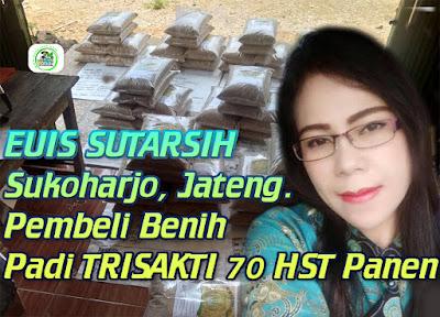 Benih pesanan EUIS SUTARSIH Sukoharjo Jateng.   (Sebelum Packing)