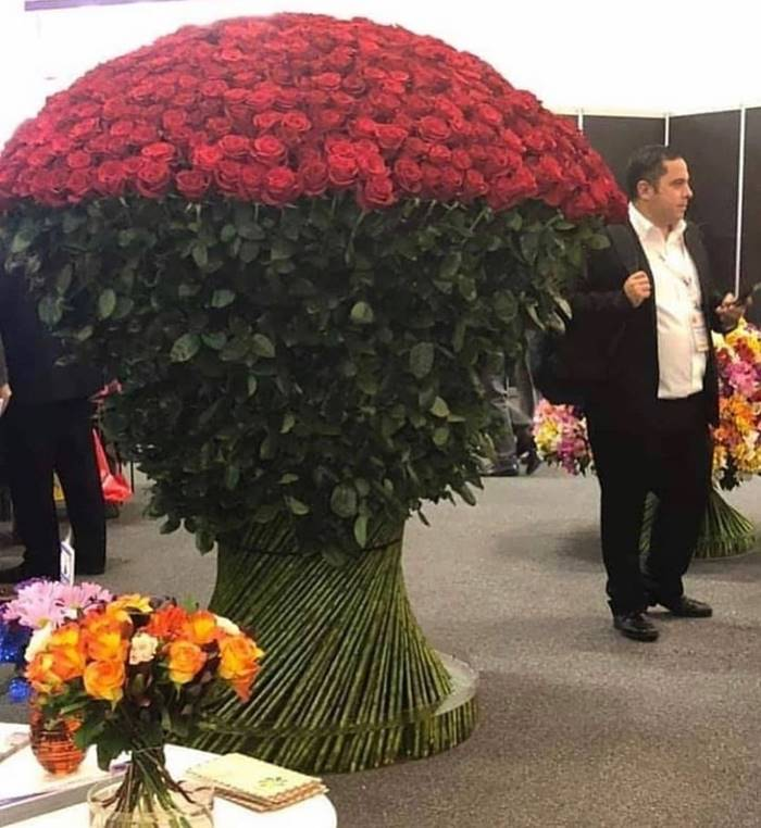 "This bouquet could be called ""Sorry, dear, I cheated on you with all your friends"""