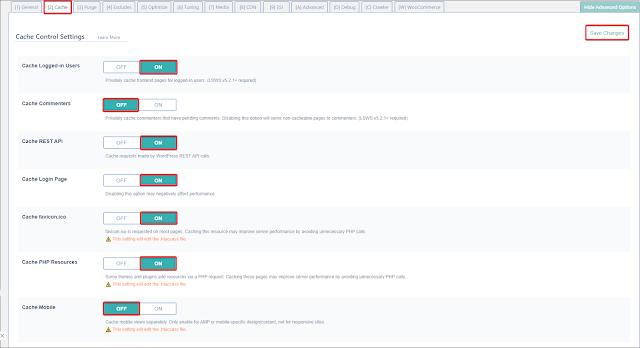 litespeed cache wp site hizlandirma görseli