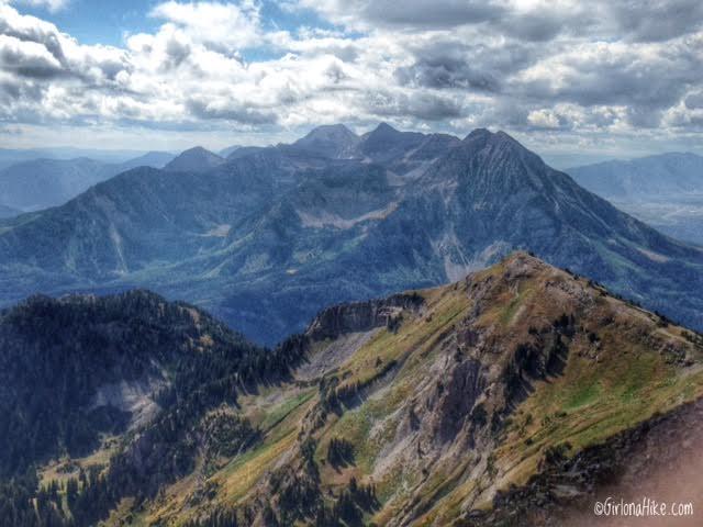 Hiking to Box Elder Peak, Utah, Hiking in Utah, Hiking in Utah with Dogs