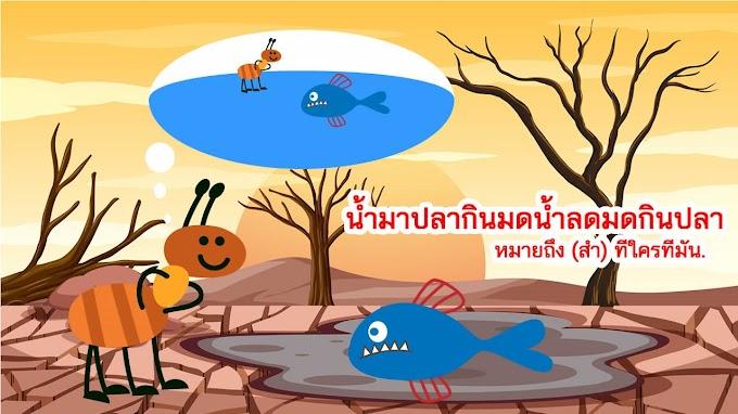 น้ำมาปลากินมดน้ำลดมดกินปลา หมายถึงอะไร ?