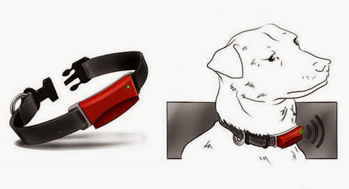 Functional Smartphone Controlled Dog Gadgets (15) 15