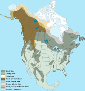 Geographic distribution bears in North America