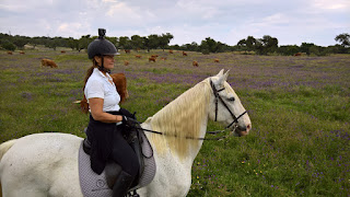 riitta reissaa, Monte Velho, lusitano, Horsexplore, riding holiday