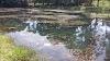 Lago Municipal de Cristianópolis está abandonado, dizem moradores