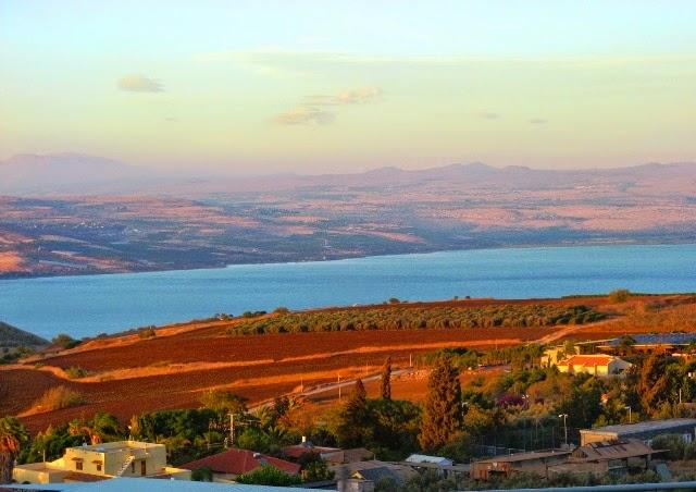 Pola uprawne w okolicy Jeziora Galilejskiego (Izrael)