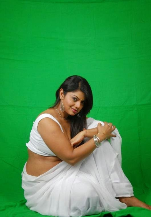 Very Hot Stills in Saree Swathi Varma Navel Pictures