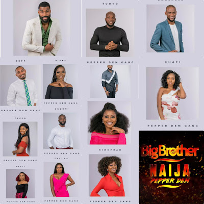 BBNaija 2019: Pepper Dem | What You Need To Know About BBNaija 2019 20 SPICY Housemates
