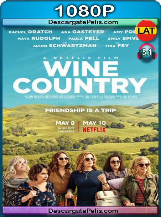 Entre vino y vinagre (2019) 1080P WEB-DL Latino – Castellano – Ingles