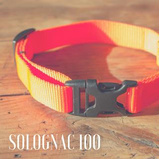 http://otojanka.blogspot.com/2015/05/obroza-i-smycz-solognac-100-decathlon.html