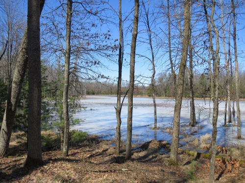 Sterling Marsh, North Country Trail