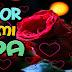 Bonitas Cartas de Amor Tiernas y Románticas para Dedicar y Enamorar