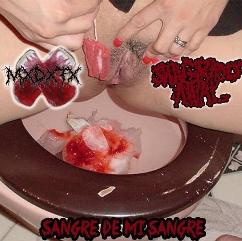 Sangrado Anal 102