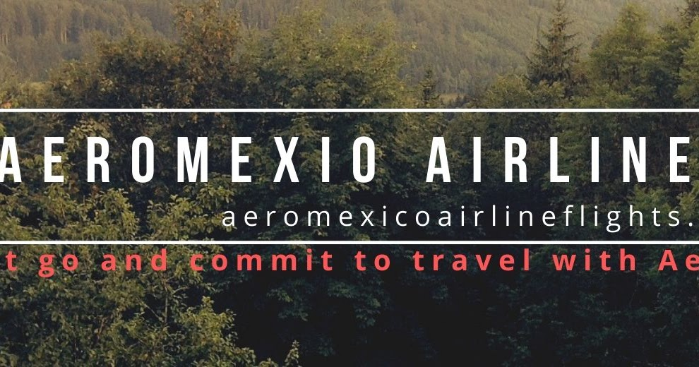Information About Aeromexico's Offerings You May Avail on Call?