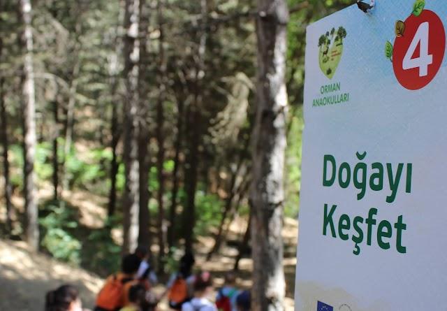 Türkiye'de ilk Orman Anaokulu kitabı yayımlanmıştı.
