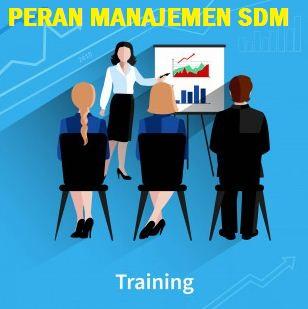 SDM - Peran Sumber Daya Manusia di Tempat Kerja