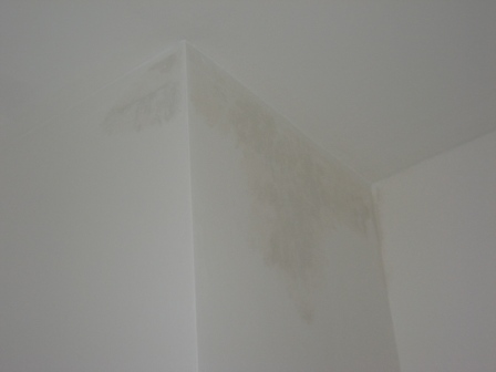 Favorit Traumhaus Stadtvilla - Baublog von Andrea & Tim: Nasse Wand im PS25