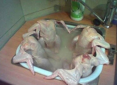 Funny Raw Chicken in a hot tub