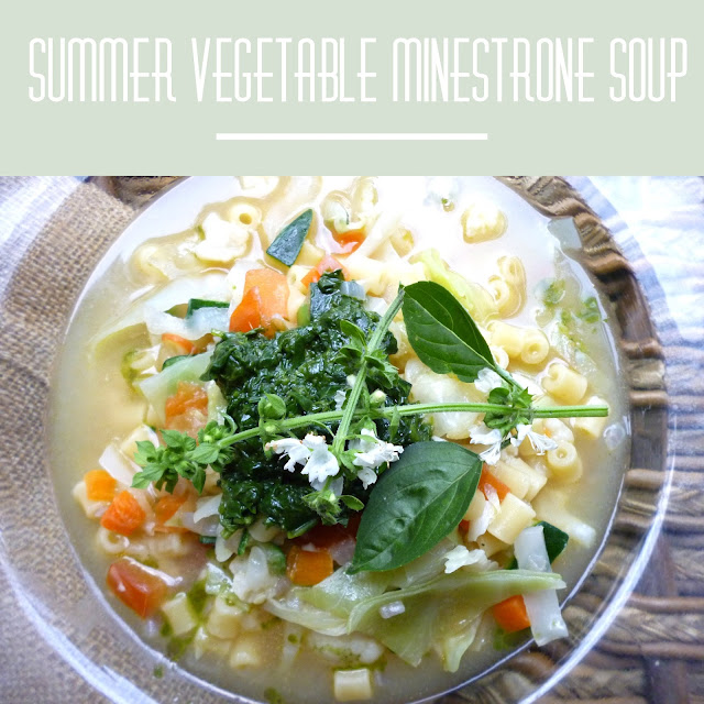 Summer Vegetable Soup: The Veganoid: Summer Vegetable Minestrone Soup