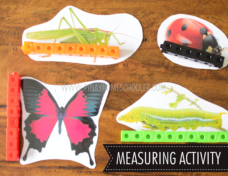 Insect Theme Printables: SAFARI TOOB INSECT Extension Activities