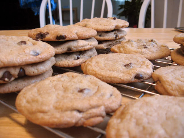 Chewy Chocolate Chip Cookies by freshfromthe.com.