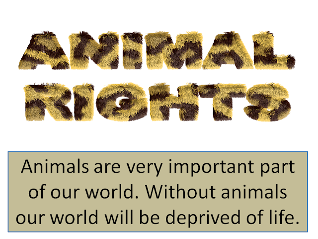 Animal rights- A global issue
