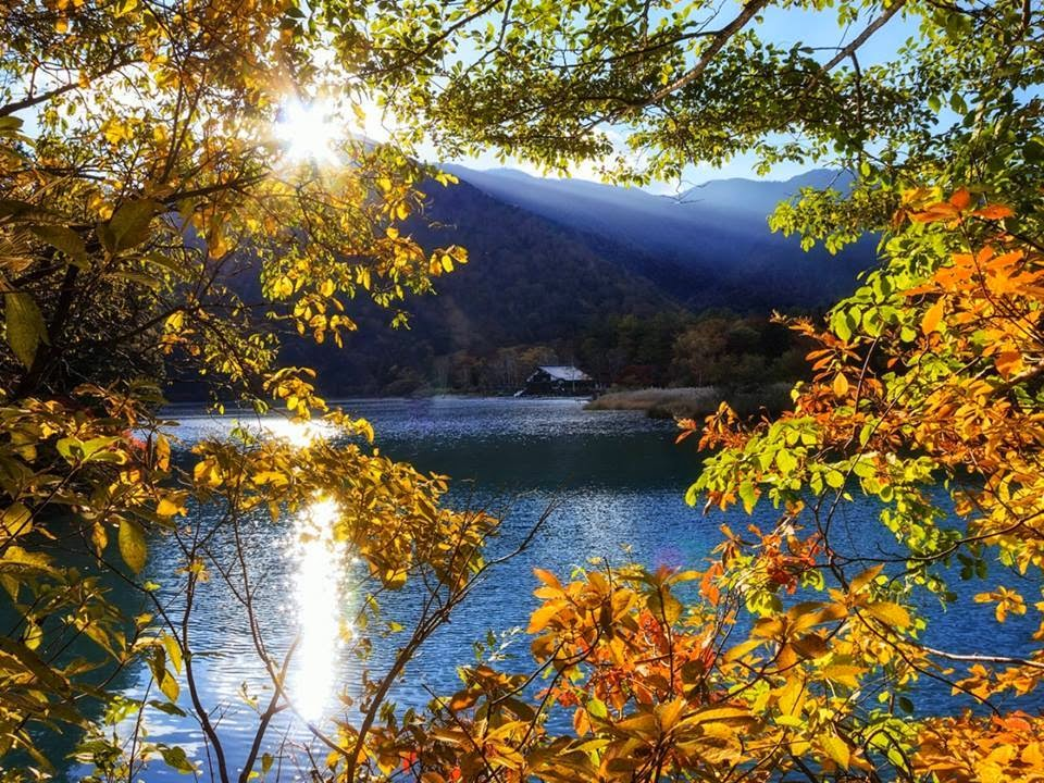 Lago no Bosque