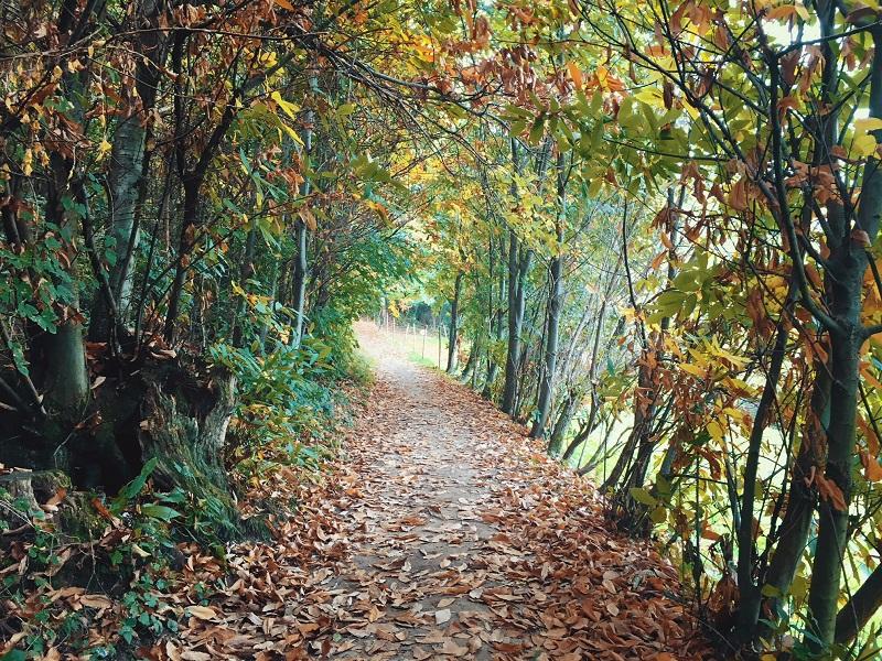 escursioni da fare in brianza sentiero dei proverbi