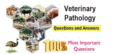 Veterinary Pathology MCQS