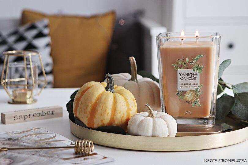 świeca zapachowa yankee candle tonka bean and pumpkin
