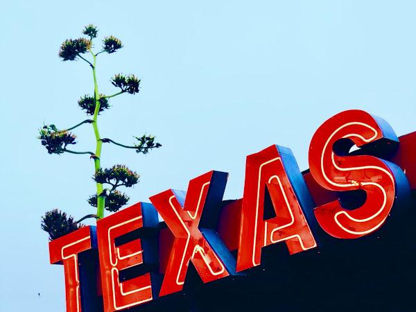 gelesen KW 28 - Die Flucht aus Texas oder wie man Wählerrechte ohne politische Mehrheit verteidigt