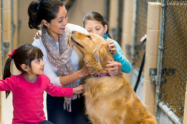 Animal Rescue Groups – Getting a Pet from Them